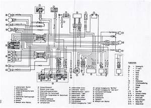 Yamaha 8 Wire Cdi Wiring