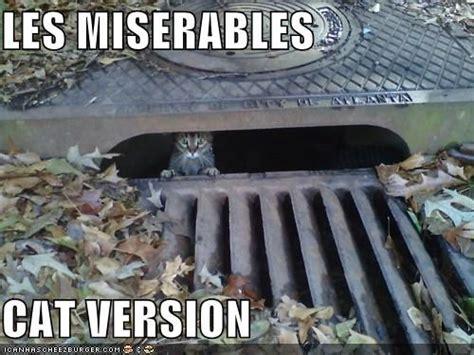Les Mis Memes - i dreamed a meme les miserables meets the internet meme les miserables and cat