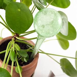 Bewässerungssystem Für Zimmerpflanzen : hereinspaziert zum flohmarkt freitag mit sch nem t delkram ~ Markanthonyermac.com Haus und Dekorationen