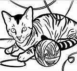 Cat Coloring Eyes Petkin Yarn Coloringsun Shopkin Printable Staring Egyptian Template sketch template