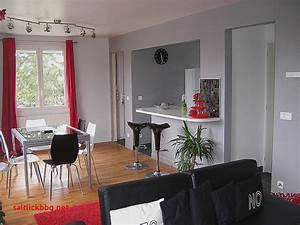 elegant peinture pour salon salle a manger pour idees de With idée peinture salon salle À manger pour deco cuisine