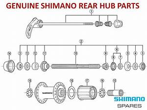 Genuine Shimano Cassette Rear Hub Freehub Cone Axle Seal Skewer For 8  9  10 Speed