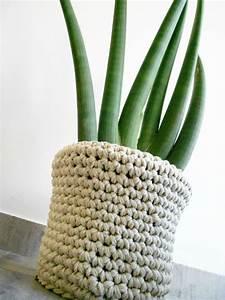 Cache Pot Plante : cache pot douillet pour plante d 39 anniversaire anisbee ~ Teatrodelosmanantiales.com Idées de Décoration