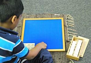 Montessori & Scientific Research