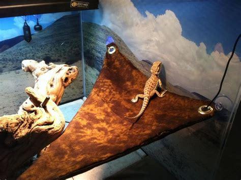 Lazy Gecko Hammock by Reptiles Hammocks And Diy Hammock On