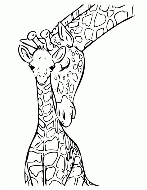 giraffe black  white    clipartmag