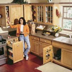 wish a would like a kitchen cabinet organizing the kitchen sink in a small space trash 2262
