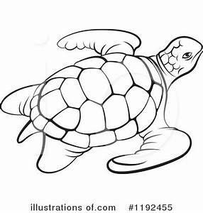 Sea Turtle Drawing Outline | www.pixshark.com - Images ...