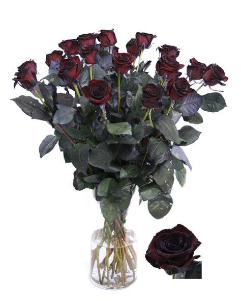 bos bloemen crematie zwarte rozen bestellen zwarte rozen bezorgen zwarte roos
