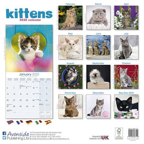 kittens calendar pet prints