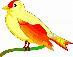 Gambar Kartun Lovebird Lucu