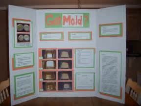 Bread Mold Science Fair Projects