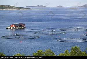 Haus Fjord Norwegen Kaufen : fischfarm netzgehege im fjord norwegen lizenzfreies bild 1495697 bildagentur panthermedia ~ Eleganceandgraceweddings.com Haus und Dekorationen
