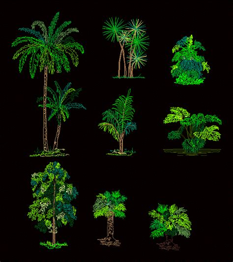 trees dwg detail  autocad designs cad