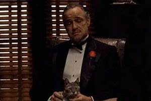 Famous movie and TV scenes that were actually improvised ...