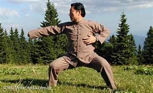 Chen Tai Chi Manual