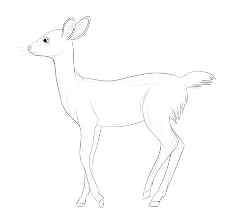 Can Yall Ask Me Questions Link In The Bio Make A Free Deer Lineart By R0ckers On Deviantart