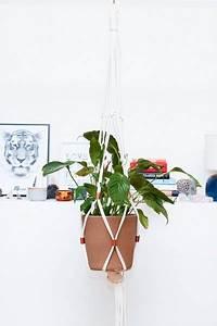 Pflanzen Zum Aufhängen : einrichtungsideen pflanzen aufh ngen ~ Michelbontemps.com Haus und Dekorationen