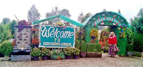 wisata kebun begonia lembang  wajib dikunjungi