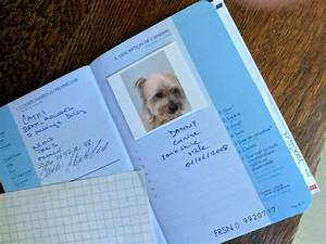 how to get an eu pet passport for your dog travelnuity With pet travel documents