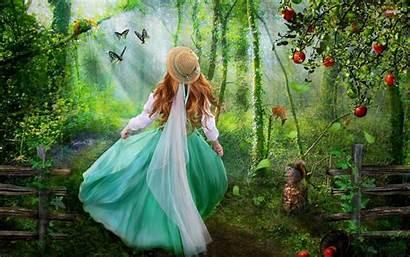 Enchanted Forest Fantasy Desktop Laptop Background Backgrounds