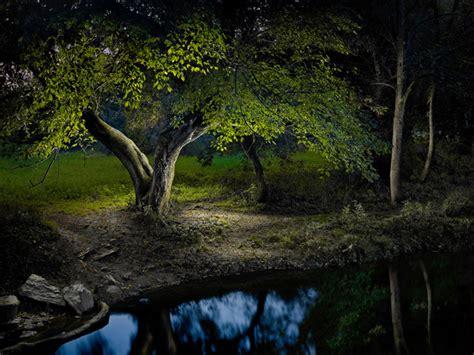 night surreal landscapes lit   led flashlight