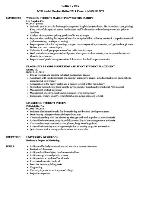 marketing student resume sles velvet