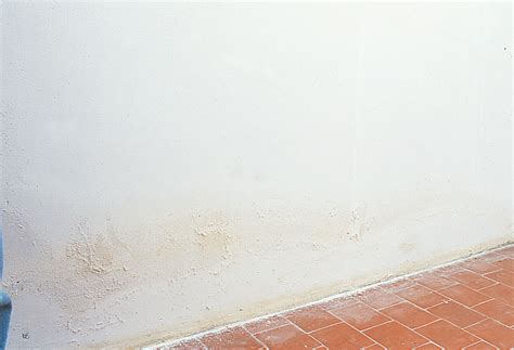 pr 233 parer un mur avant de le rev 234 tir bricobistro