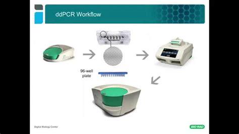 Droplet Digital™ PCR Tips & Tricks: ddPCR™ Assay Design ...