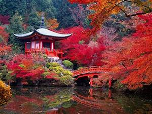 Kyoto The Best Destination In Japan