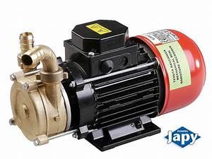 Pompe A Fioul Electrique : pompe electrique pour eau marine eau de mer pompes japy ~ Melissatoandfro.com Idées de Décoration