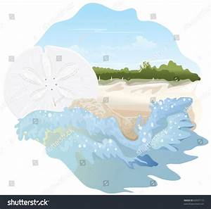 Sand Dollar On Beach Spot Illustration - 62037115 ...