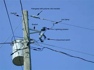 Power Line Noise And Bat Detector