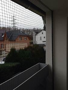 schiebbares katzennetz vom marktfuhrer fur katzennetz With feuerstelle garten mit katzennetz balkon befestigen ohne bohren