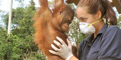 zoology  animal science deakin