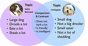 Compare  U0026 Contrast Essay