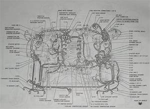 2002 Ford Expedition Engine Diagram  U2022 Wiring Diagram For Free