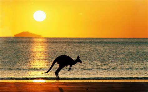 Sunset Australia Beach Wallpaper 1920x1200 32121