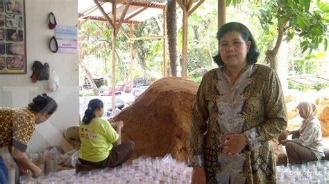 Lu Projie Jamur dulu doyan jamur kini lestari juragan jamur 1