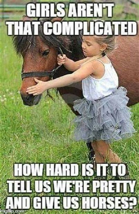 Horse Meme - tell us we re pretty and buy us horses a horse is a horse pinterest a start horse