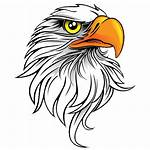 Eagle Save Transparent Background Icon Ark Freeiconspng