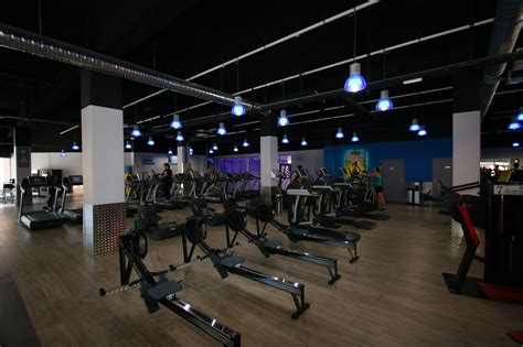 siege fitness park doc fitness park siege social
