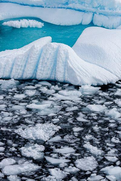 icebergs cierva cove  william neill susan spiritus