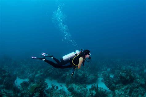 top  questions      diving scuba