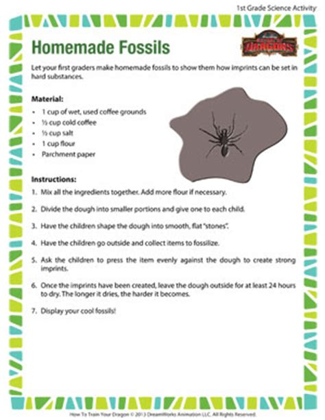 fossils science activity for school