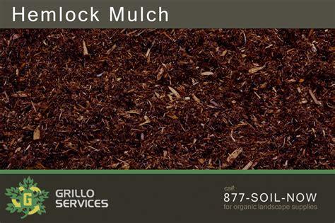 what color mulch is best choosing between pine hemlock cedar bark colored mulch ct grillo services