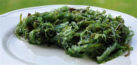 comment cuisiner les algues comment cuisiner et utiliser les algues luximer magazine