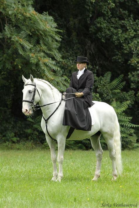 horse kladruber horses czech breeds riding kladruby republic english golden emperors kings character lipizzan saddle side roman stud farm types