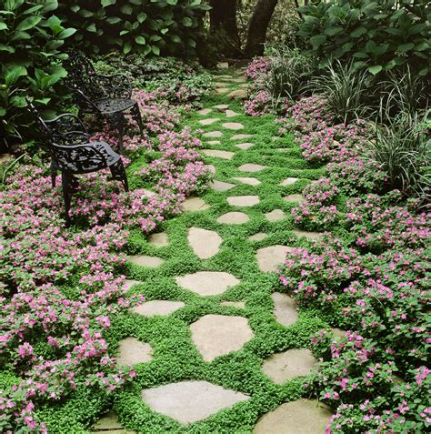 low growing ground cover 10 great groundcover plants bhgcom better homes and gardens 18 best flowering ground cover