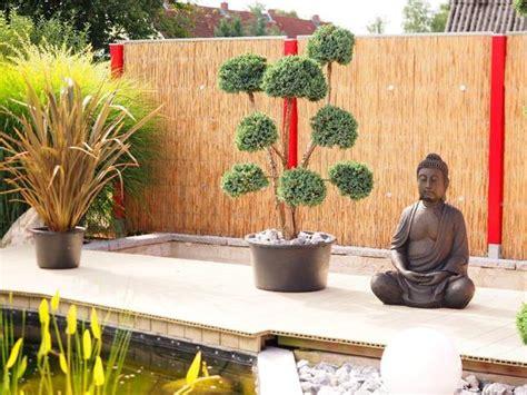 Kiefer Formgehölze Bonsai Japanischer-garten Kiesgarten